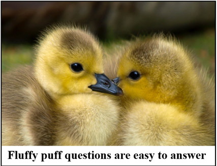 Fluffy puff questions are easy to answer